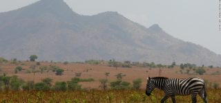 Lonyili Mountain