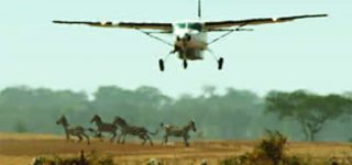 3 Days Flying Safari to Kidepo