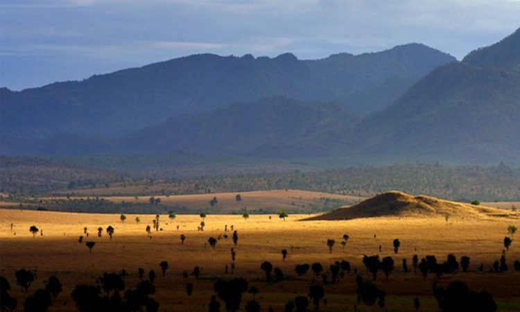 Kidepo Valley National Park meaning