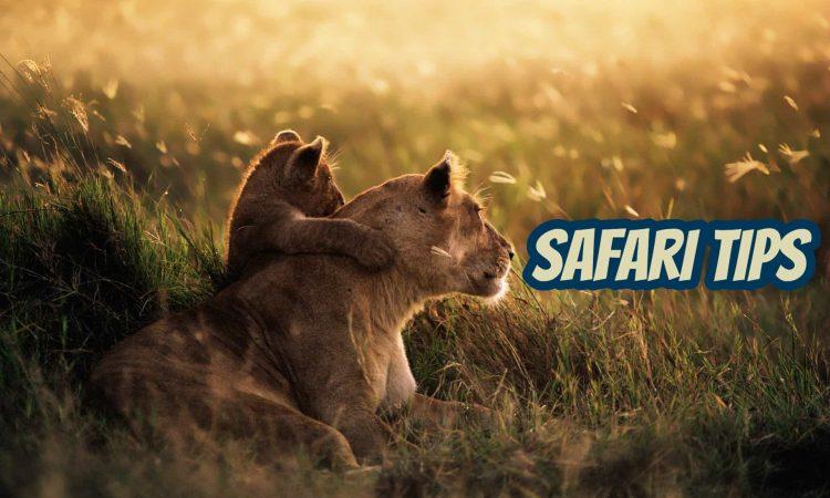 Safari Tips