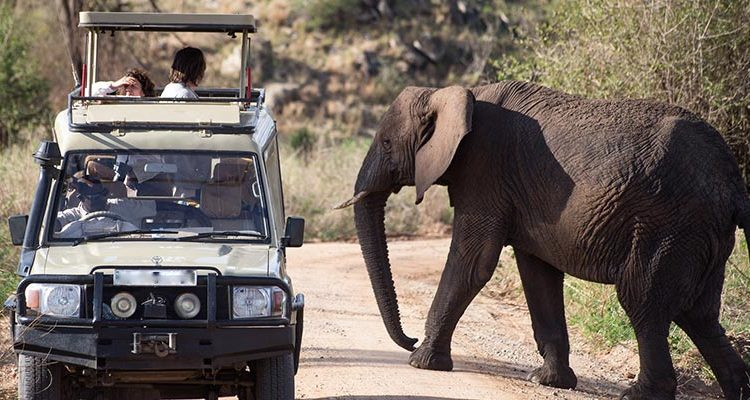 Activities in Kidepo National Park